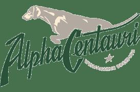 alpha centauri weimaraner breeding allevamento roma