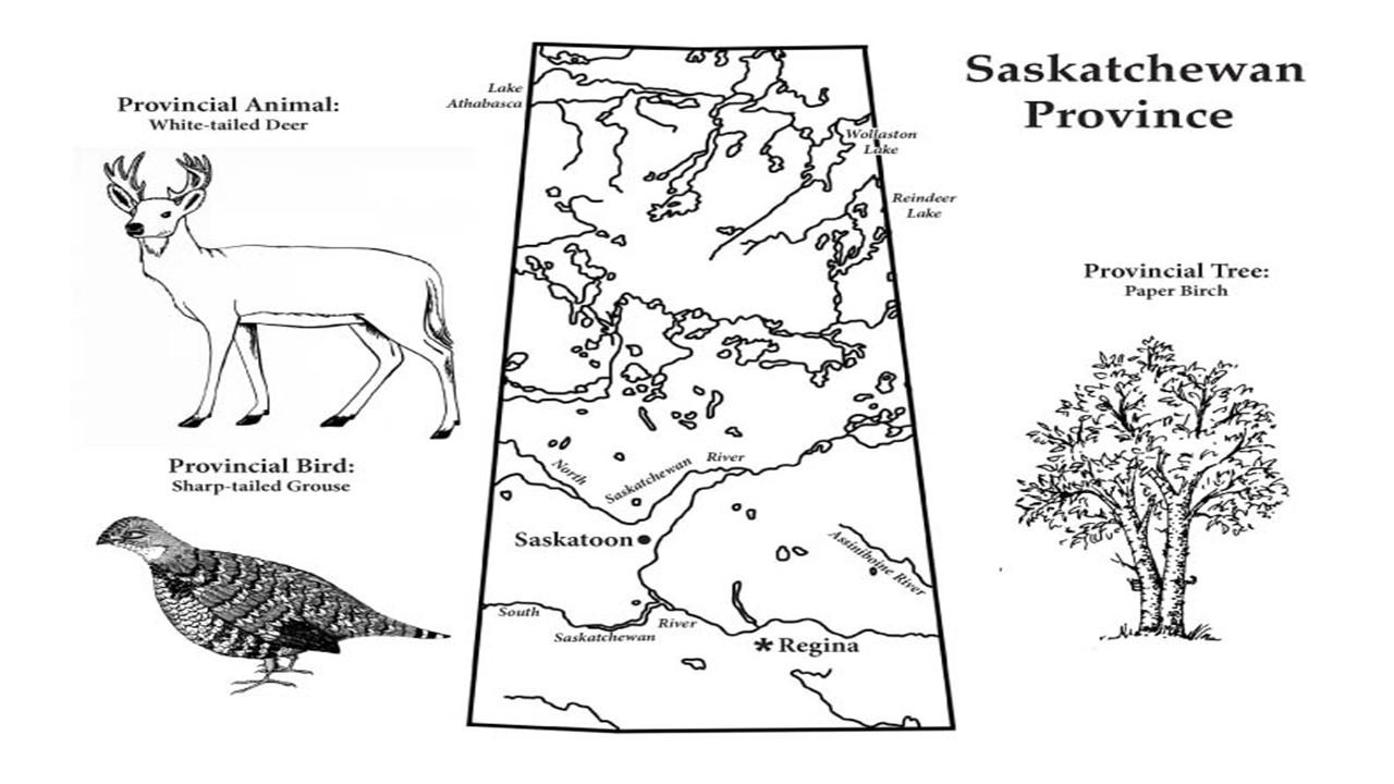 Saskatchewan Expression of Interest- Alpha Consultants.