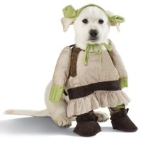 Shrek Dog Costume   Alpha Mom