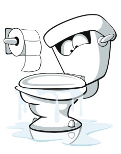 Four Ways to Fix a Clogged Toilet without a Plunger