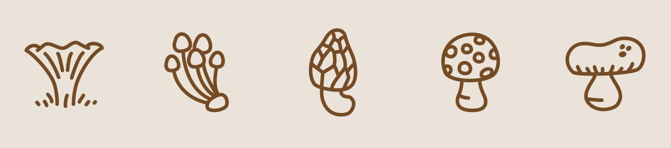 autumn-mushrooms-1