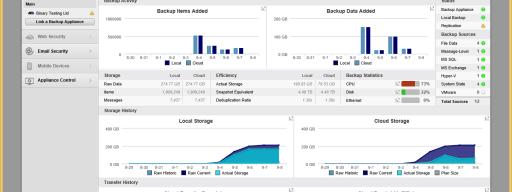 Barracuda Backup Server 290 review