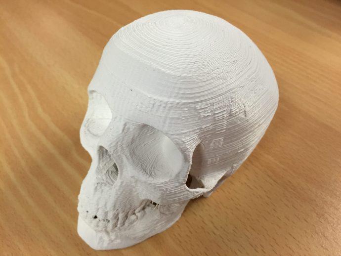 Skull printed with the XYZ da Vinci 1