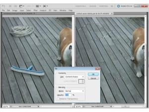 Adobe Photoshop auto-fill