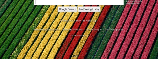 Google photo background