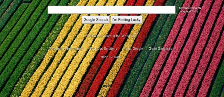 Google kills photo homepage after 14 hours
