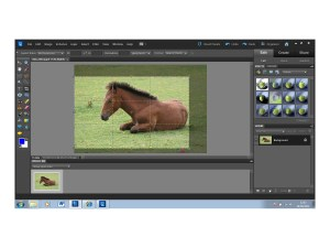 Adobe Photoshop Elements 10 - rule of thirds