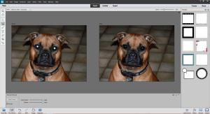 Adobe Photoshop Elements 12