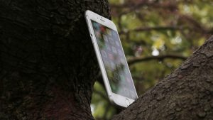 Apple iPhone 6 review: At an angle