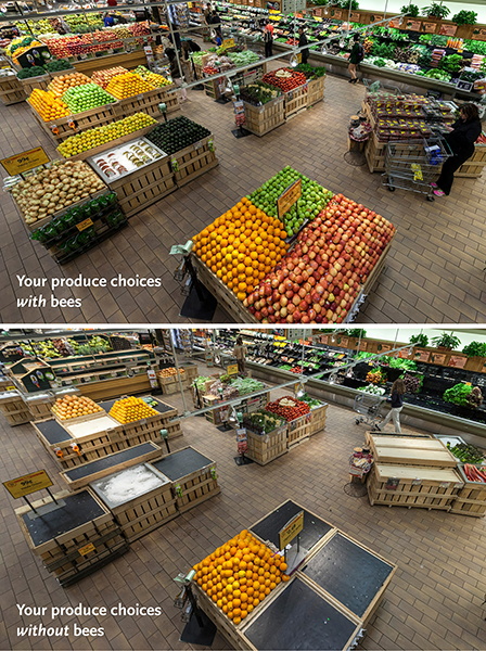 whole_foods_without_bees