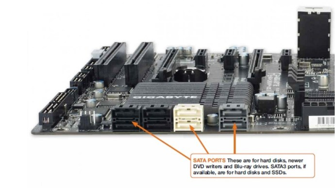 motherboard-connections