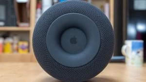 Apple HomePod base