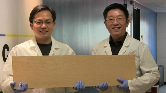 scientists_develop_wood_stronger_than_steel