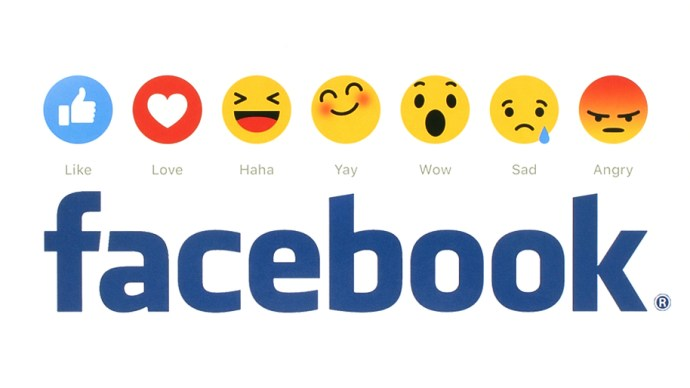 facebook_youtube_biggest_us_website