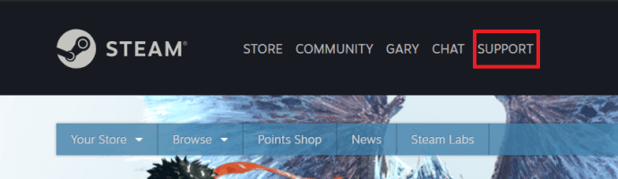 Steam Support Page