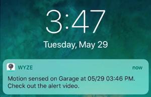 wyze cam notifications