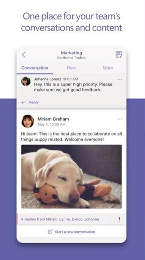 microsoft teams how to view everyone