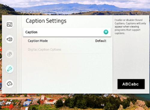 caption settings