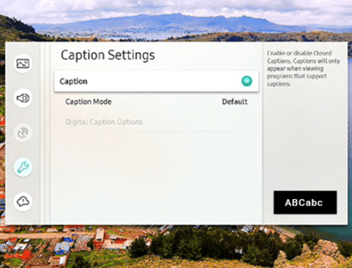 caption settings