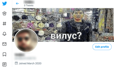 remove your profile picture in twitter