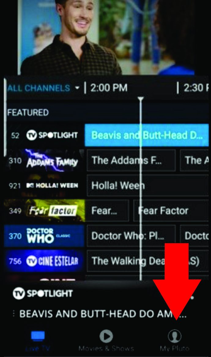 Adult channel guide