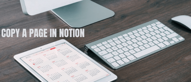 How to Copy a Page in Notion