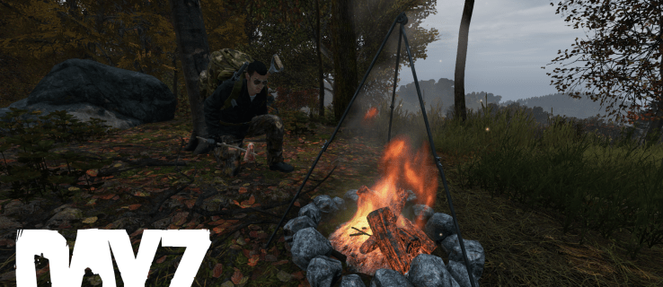 How to Get Stones in Dayz