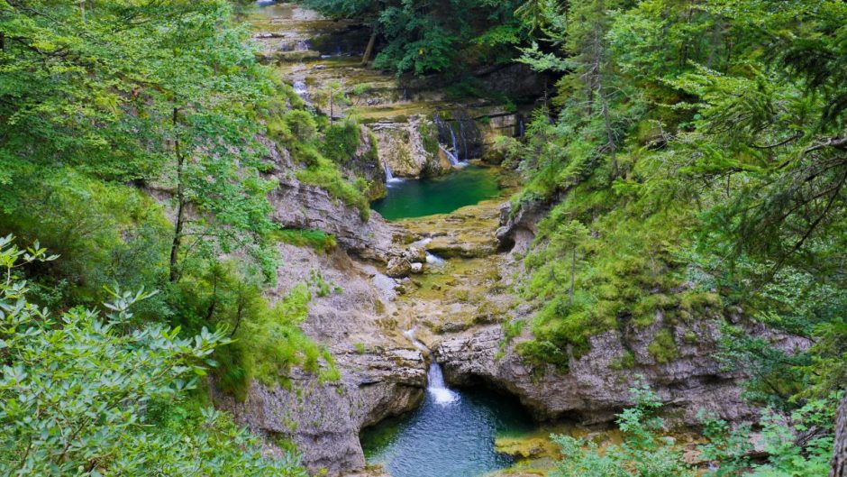 There are many beautiful wilddipping spots inside the Fischbach Gorge