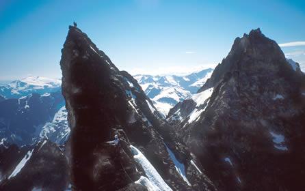 AAI Alpine Leadership 3