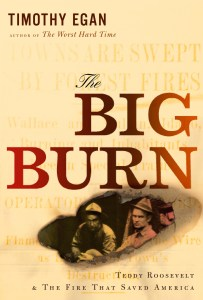 big-burn-cover-image