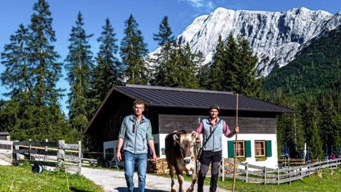 Jonas Metzler und Patrick Koch fühlen sich als Hüttenwirte extrem wohl. // Foto: Tillfussalm