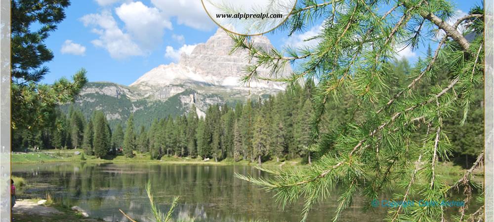 Lago di Landro  Alpi Prealpi Italia