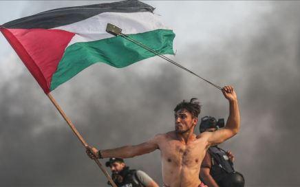 palestino torso