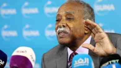 وزير التربية والتعليم بروفيسور محمد الأمين التوم