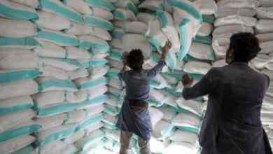 أعداد من يعانون من الجوع قد تتضاعف من 135 مليون شخص إلى أكثر من 250 مليون شخص - رويترز