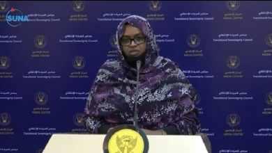 الاستاذة لينا الشيخ وزيرة العمل والتنمية الاجتماعية