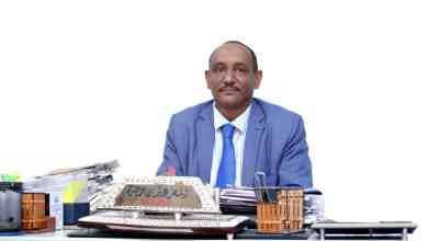معز عثمان حضرة المحامي