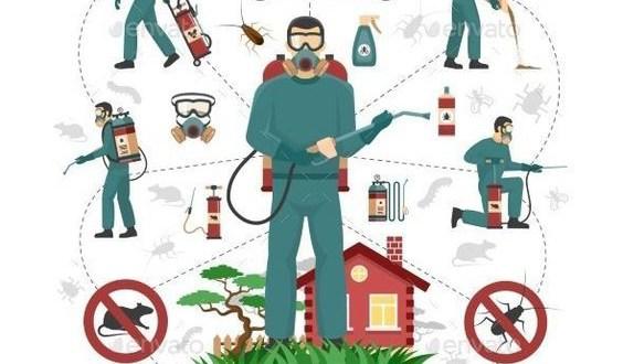 شركة رش مبيدات بالقطيف 0557574627 - 0576068044 مكافحة الحشرات بالضمان
