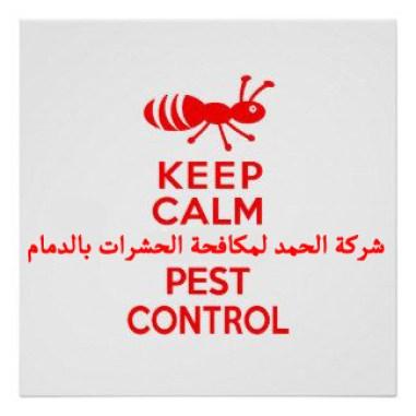 شرمكة مكافحة حشرات بالدمام