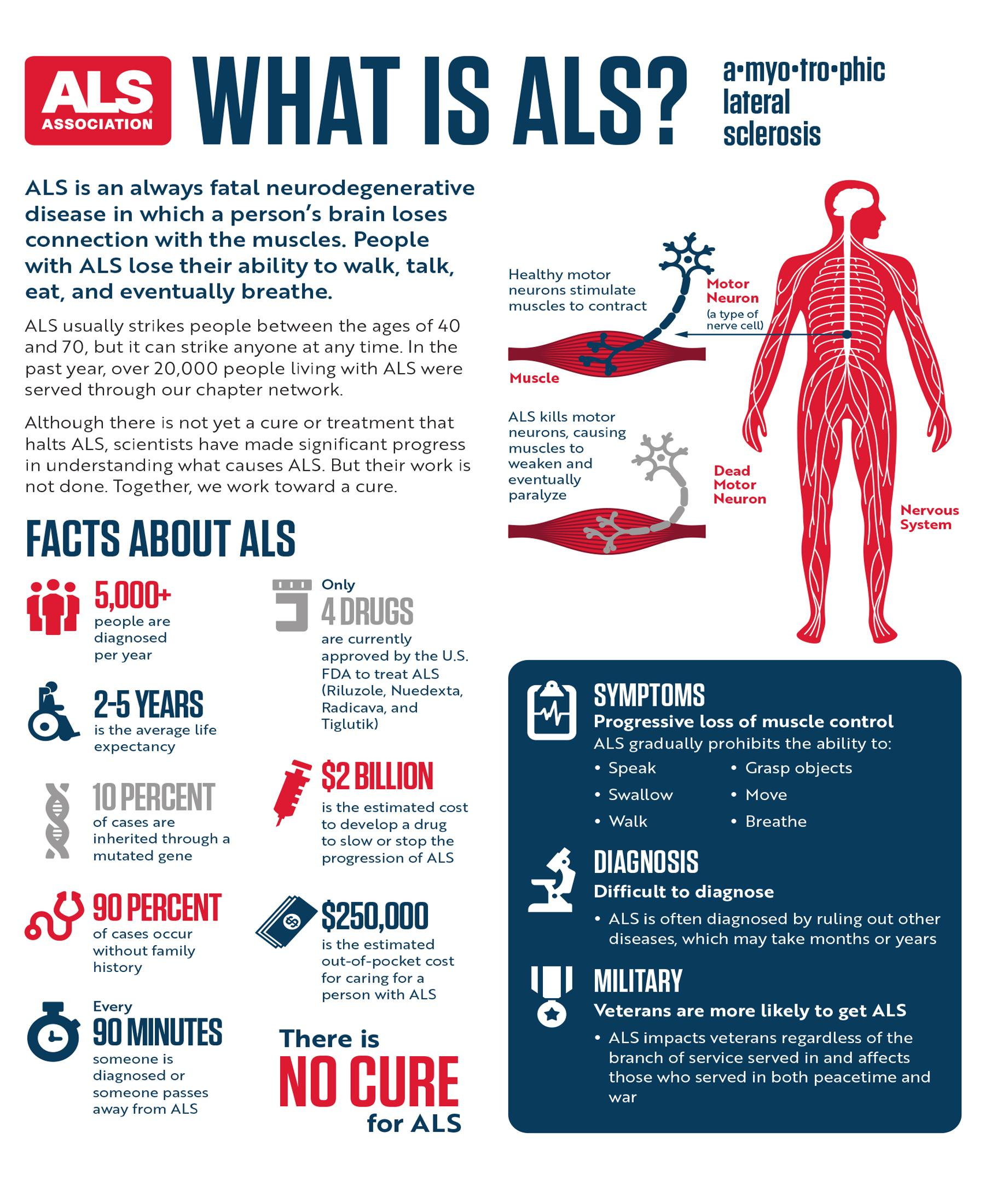 Als / Inside Als The Neurons Behind The Disease Youtube ...