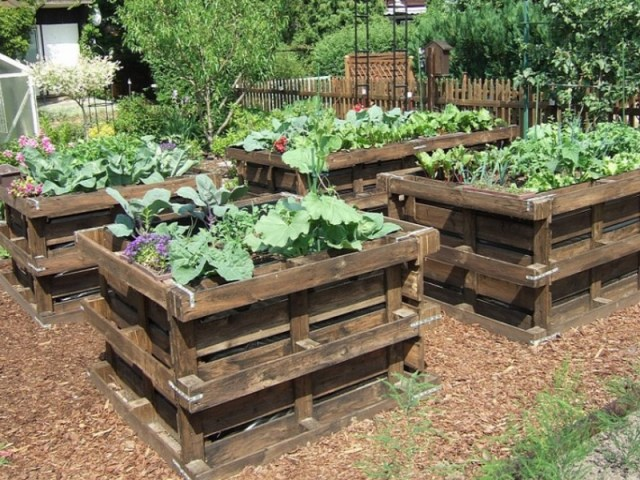 construire un potager sur lev pour jardiner debout blog jardin alsagarden le magazine des. Black Bedroom Furniture Sets. Home Design Ideas