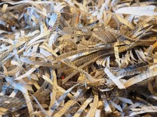 shredder-779853_1280