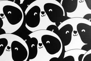 Panda's a new story