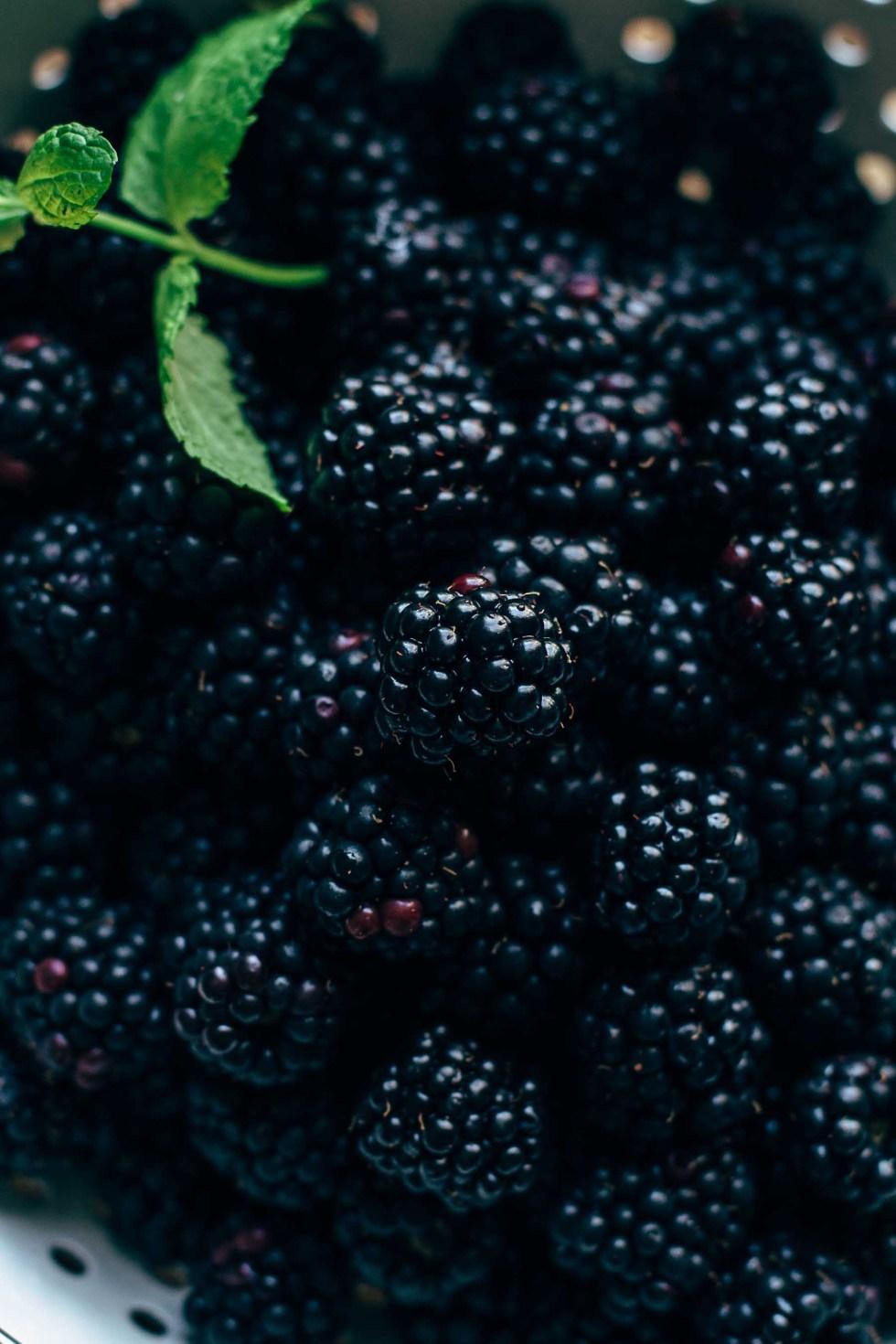 Blackberry Pie Recipe From Scratch