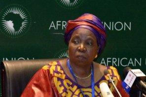 الإيبولا وبوكو حرام على منضدة إجتماع القادة الأفارقة