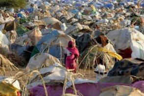 اغتصاب نازحة وطعنها بالسكين بوسط دارفور