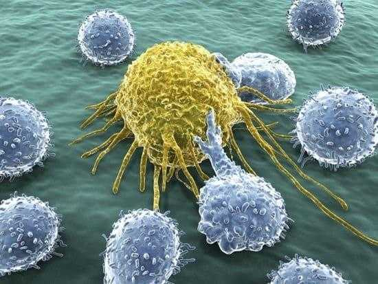 الدفاع المناعي والسرطان Cancer and Immune System