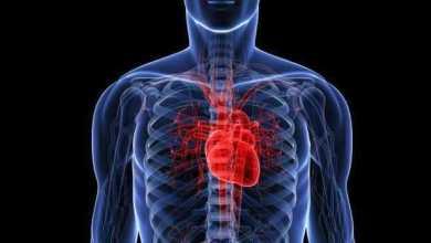 دراسة: عقار أزيثروميسين لا يعطل الإيقاع الطبيعى لعمل القلب