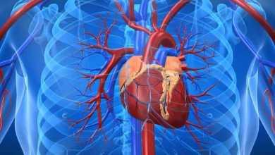الجراحة القلبية أفضل في فترة ما بعد الظهيرة