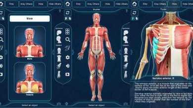 برنامج التركيب التشريحي للعضلات – Muscle Anatomy